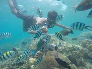 full day tour lombok